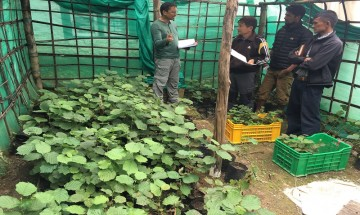 The Agro-Forestry Resource Center (AFRC) (2014 - 2016)